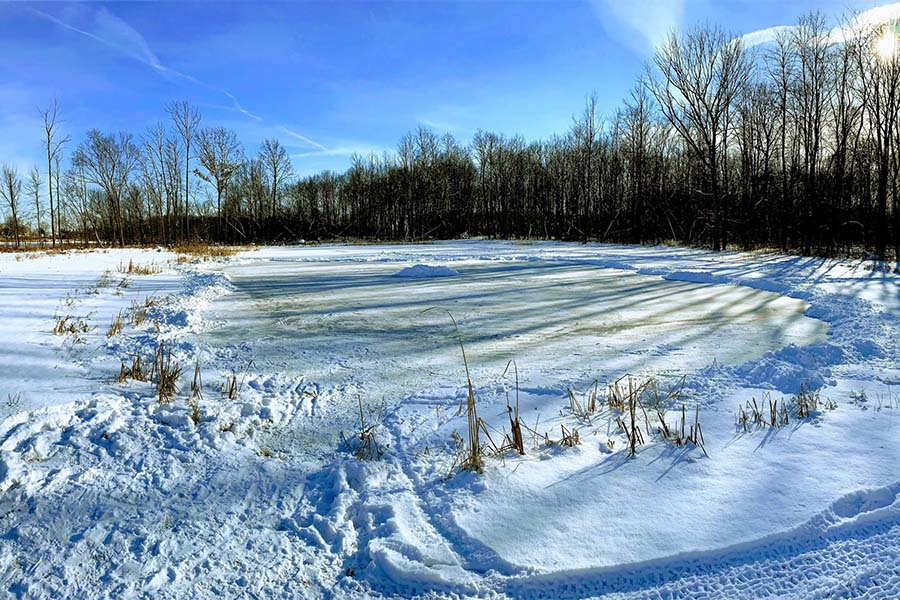 Client Center - View Of Snow Covered Pond And Grass In Portage Indiana